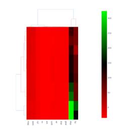 Clustergram