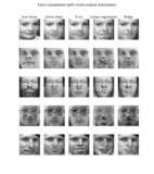 Face Completion with Multi-Output Estimators