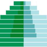 Population Pyramid Charts